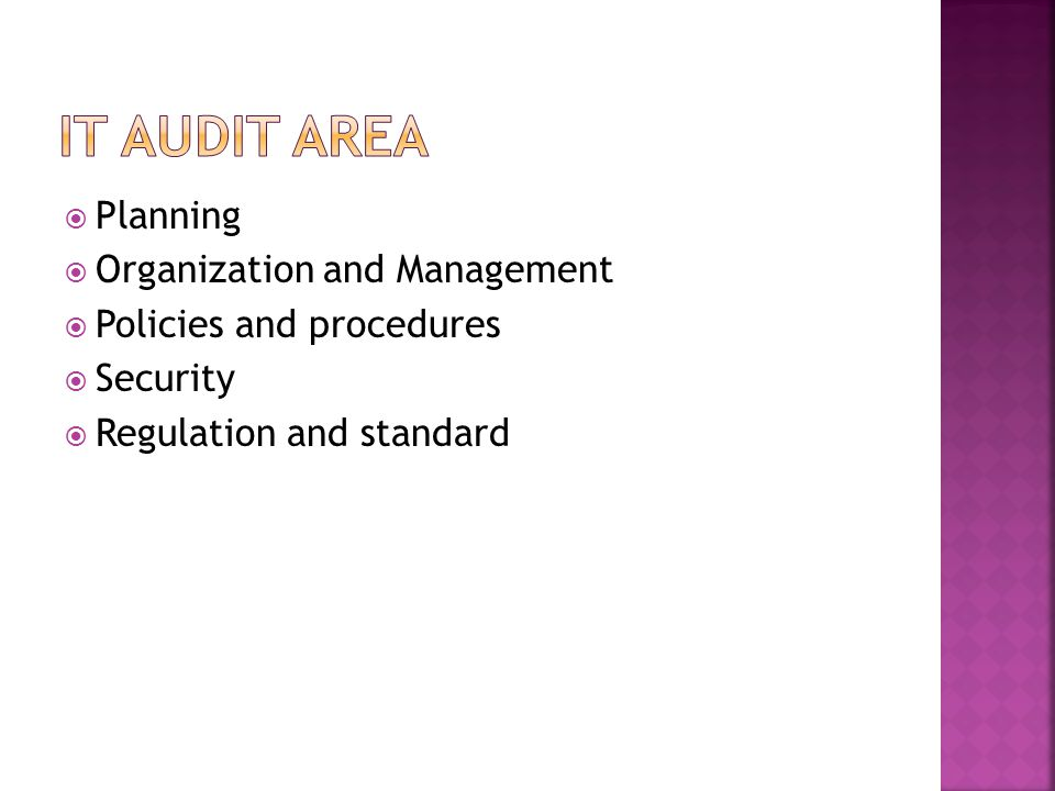 IT Audit Area Planning Organization and Management