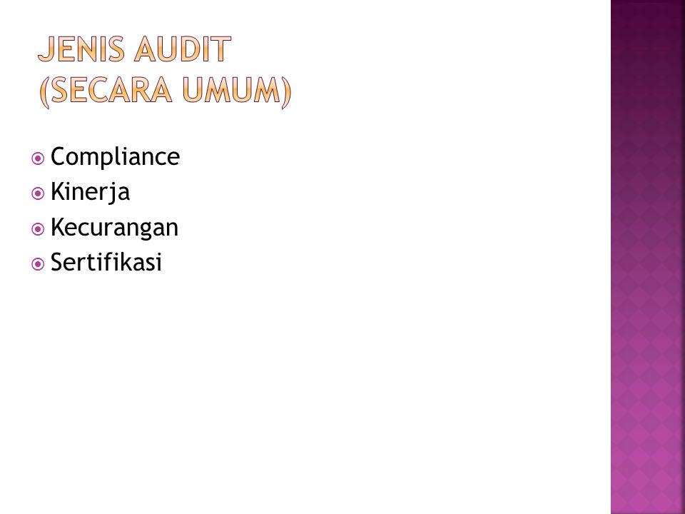 Jenis Audit (Secara Umum)