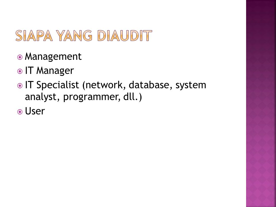 Siapa yang Diaudit Management IT Manager