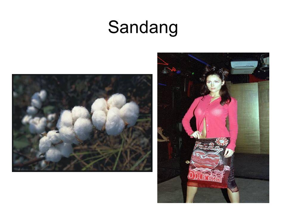 Sandang