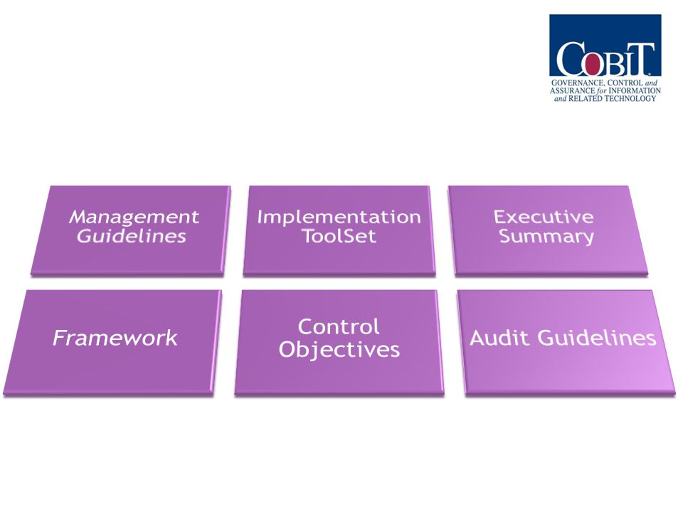 Management Guidelines Implementation ToolSet Executive Summary