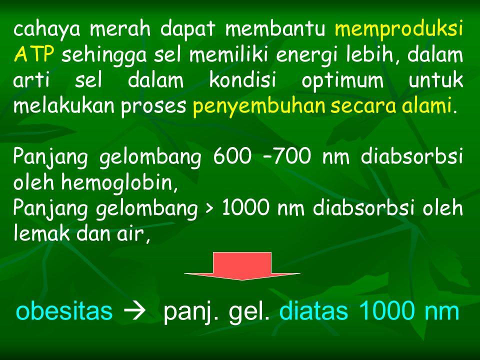 obesitas  panj. gel. diatas 1000 nm