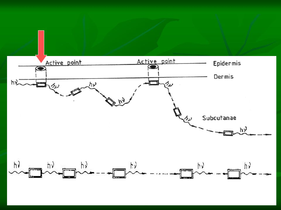 Hasil penelitian arah rambat QI, kecepatan aliran QI