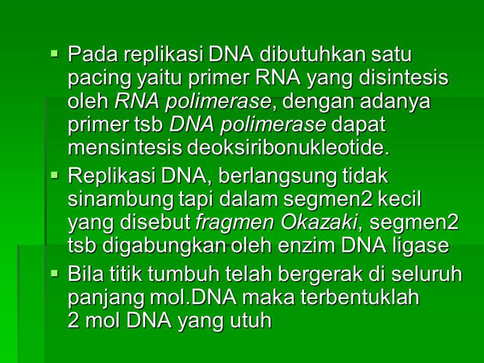 Pada replikasi DNA dibutuhkan satu pacing yaitu primer RNA yang disintesis oleh RNA polimerase, dengan adanya primer tsb DNA polimerase dapat mensintesis deoksiribonukleotide.