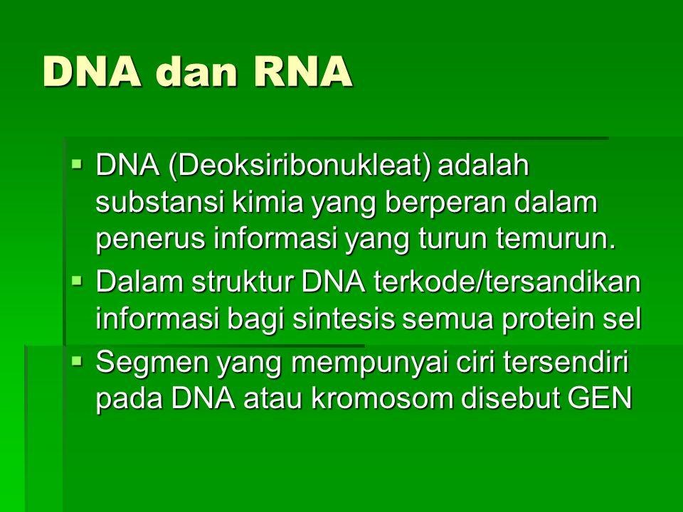 DNA dan RNA DNA (Deoksiribonukleat) adalah substansi kimia yang berperan dalam penerus informasi yang turun temurun.