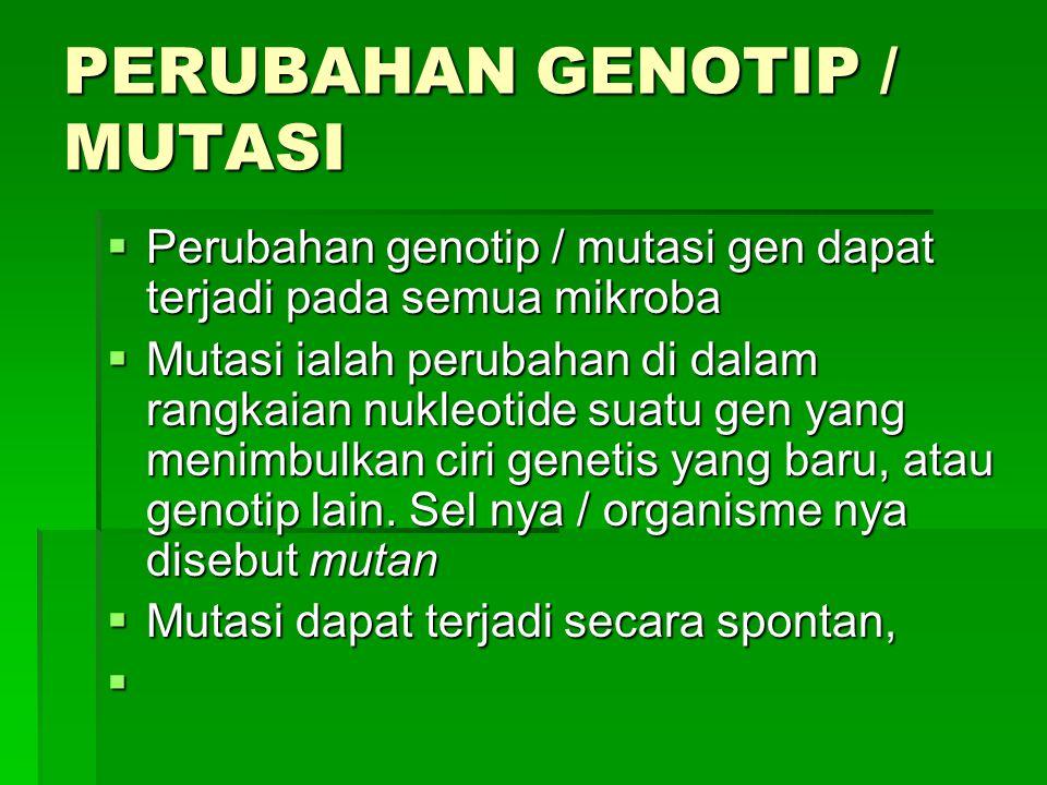 PERUBAHAN GENOTIP / MUTASI
