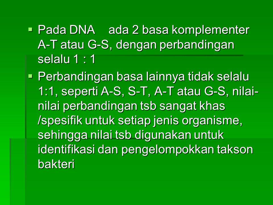 Pada DNA ada 2 basa komplementer A-T atau G-S, dengan perbandingan selalu 1 : 1