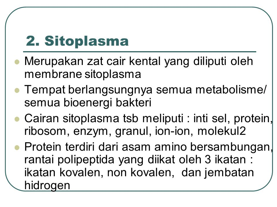 2. Sitoplasma Merupakan zat cair kental yang diliputi oleh membrane sitoplasma. Tempat berlangsungnya semua metabolisme/ semua bioenergi bakteri.