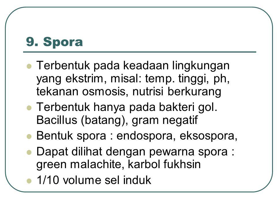 9. Spora Terbentuk pada keadaan lingkungan yang ekstrim, misal: temp. tinggi, ph, tekanan osmosis, nutrisi berkurang.