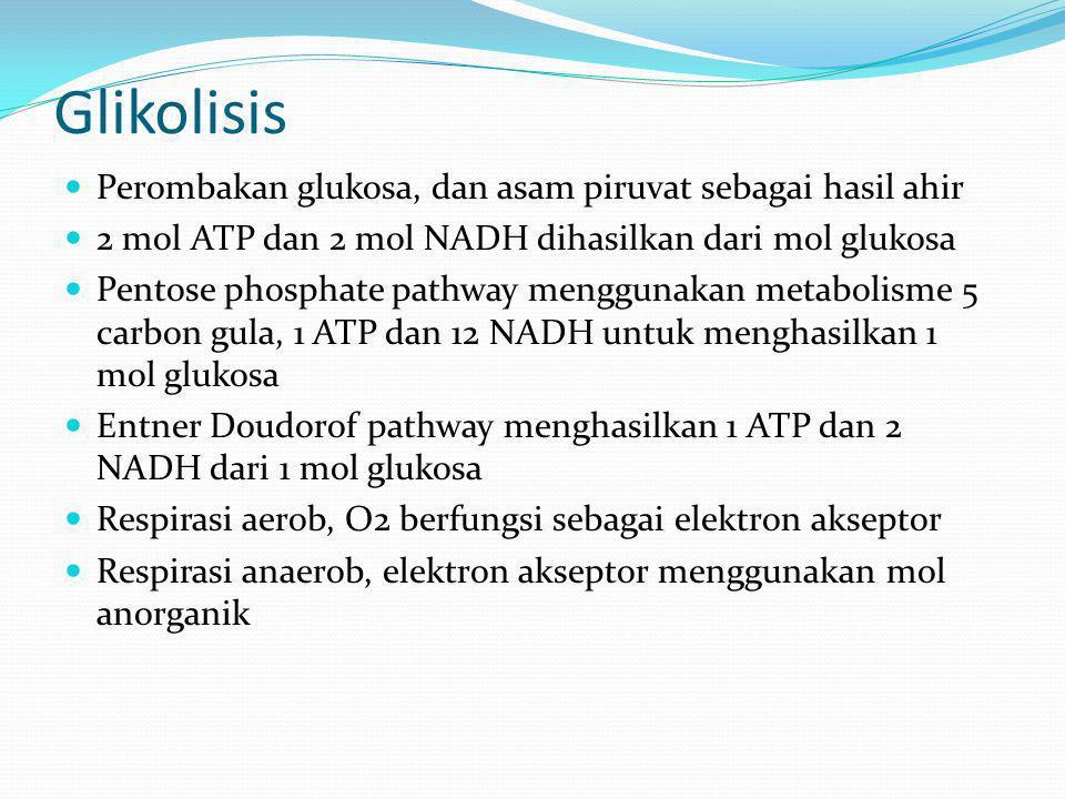 Glikolisis Perombakan glukosa, dan asam piruvat sebagai hasil ahir