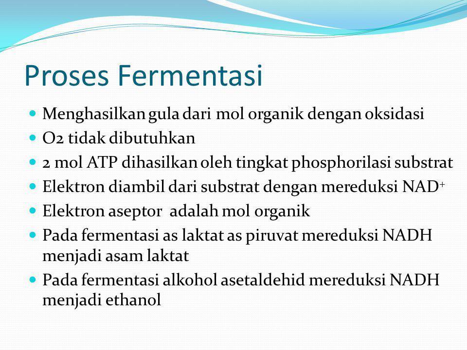 Proses Fermentasi Menghasilkan gula dari mol organik dengan oksidasi