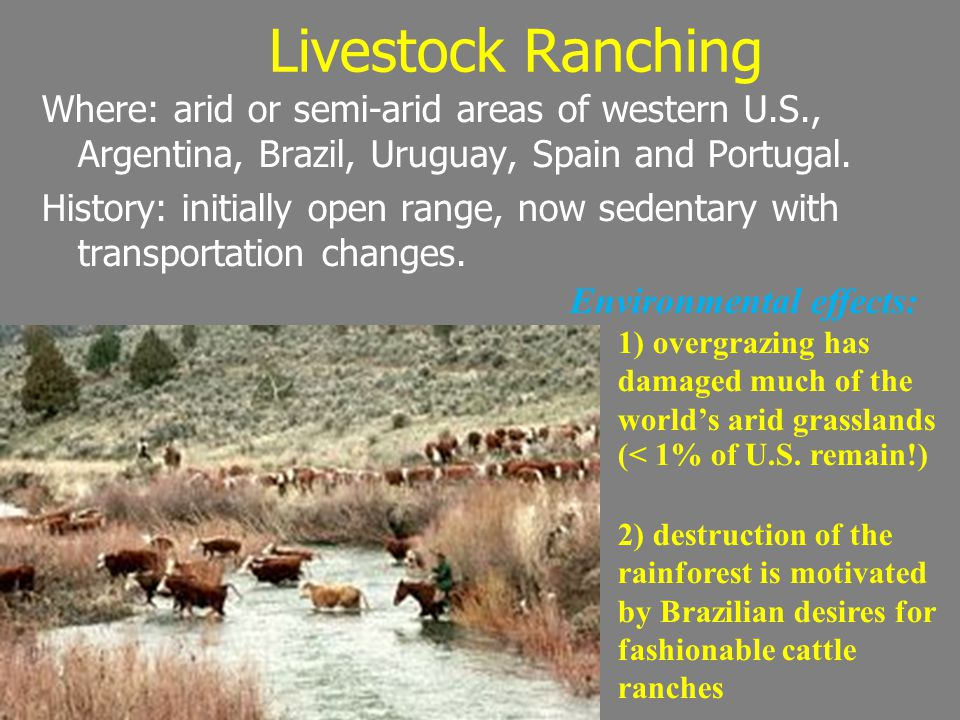 Livestock Ranching Where: arid or semi-arid areas of western U.S., Argentina, Brazil, Uruguay, Spain and Portugal.