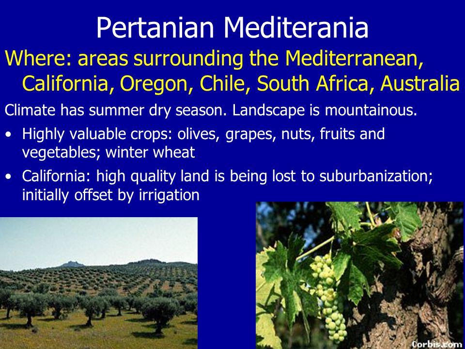 Pertanian Mediterania