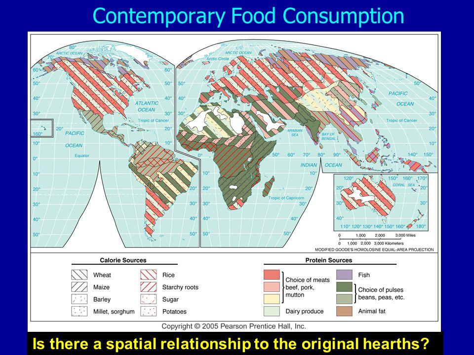 Contemporary Food Consumption