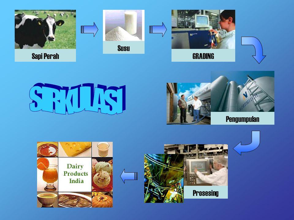Susu Sapi Perah GRADING SIRKULASI Pengumpulan Prosesing