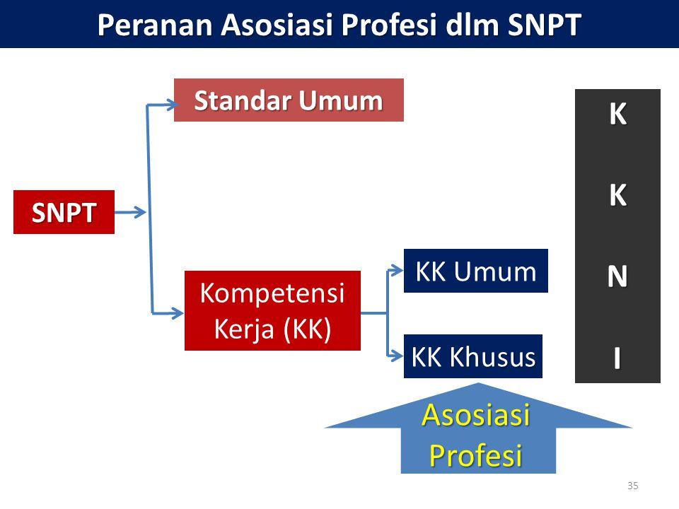 Peranan Asosiasi Profesi dlm SNPT