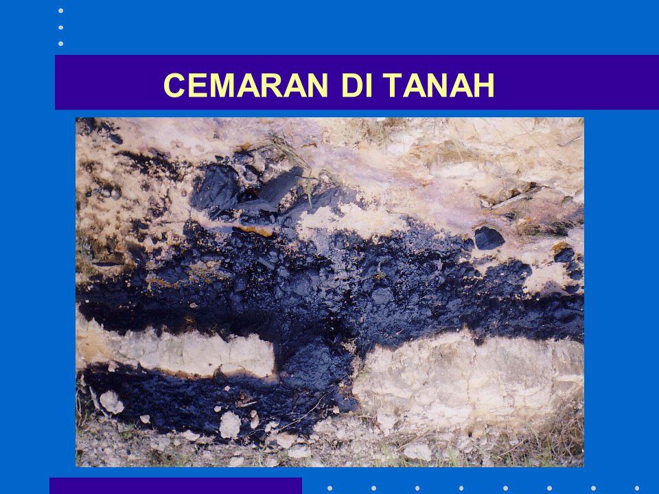 CEMARAN DI TANAH