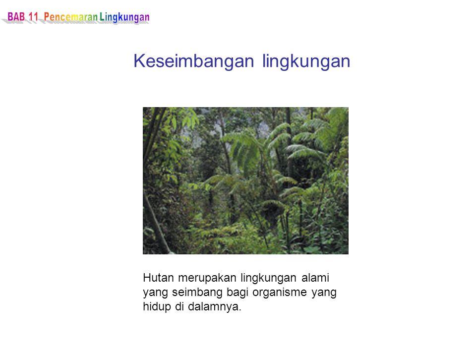 Keseimbangan lingkungan