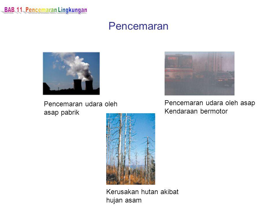 BAB 11 Pencemaran Lingkungan