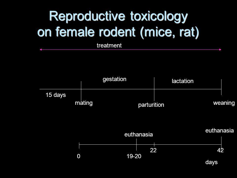 Reproductive toxicology on female rodent (mice, rat)