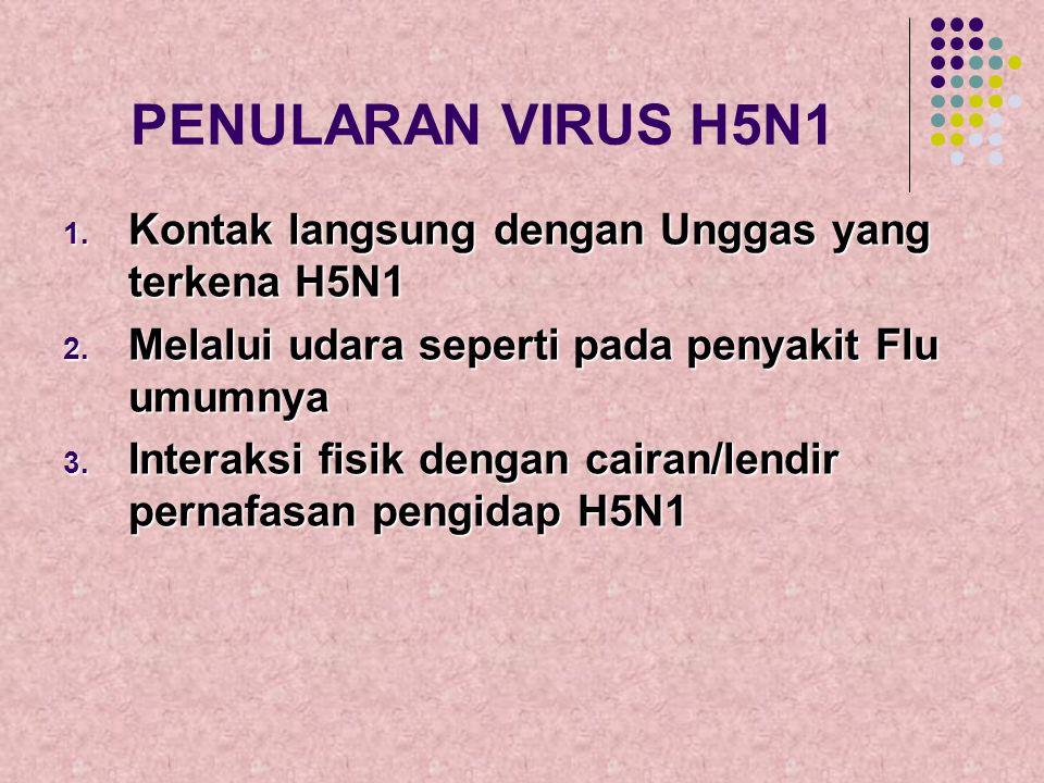 PENULARAN VIRUS H5N1 Kontak langsung dengan Unggas yang terkena H5N1