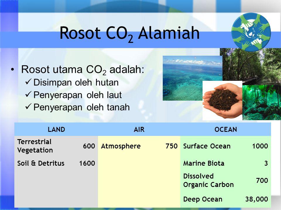 Rosot CO2 Alamiah Rosot utama CO2 adalah: Disimpan oleh hutan