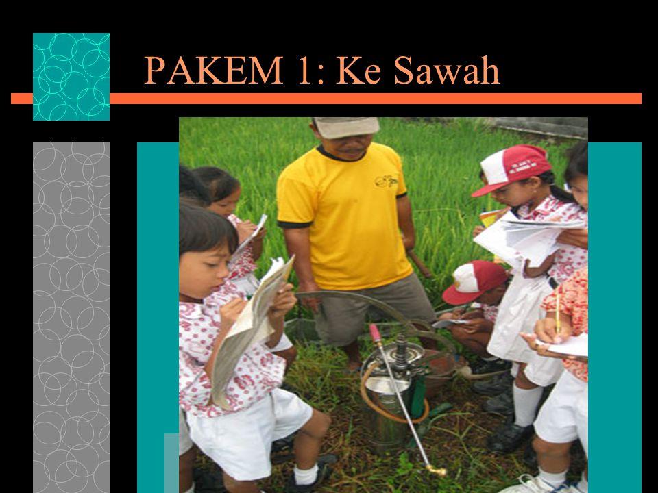 PAKEM 1: Ke Sawah