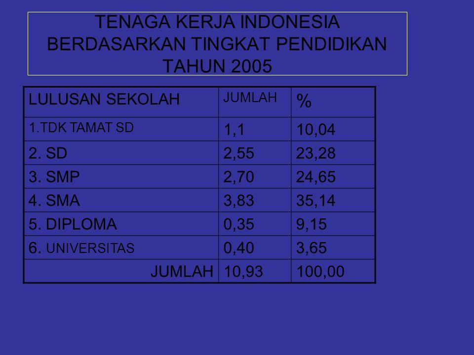 TENAGA KERJA INDONESIA BERDASARKAN TINGKAT PENDIDIKAN TAHUN 2005