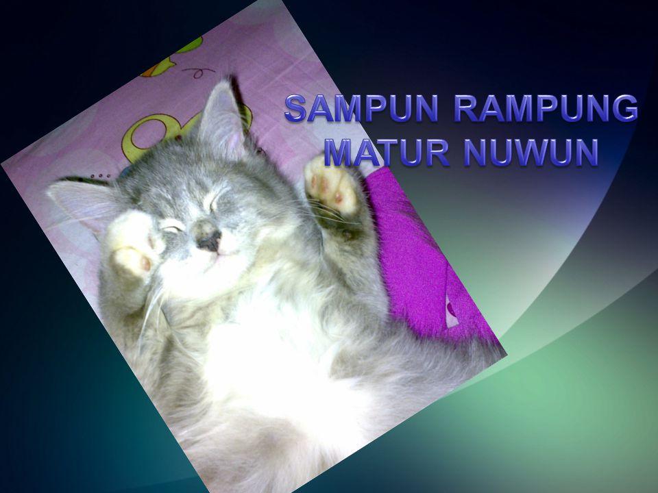 SAMPUN RAMPUNG MATUR NUWUN