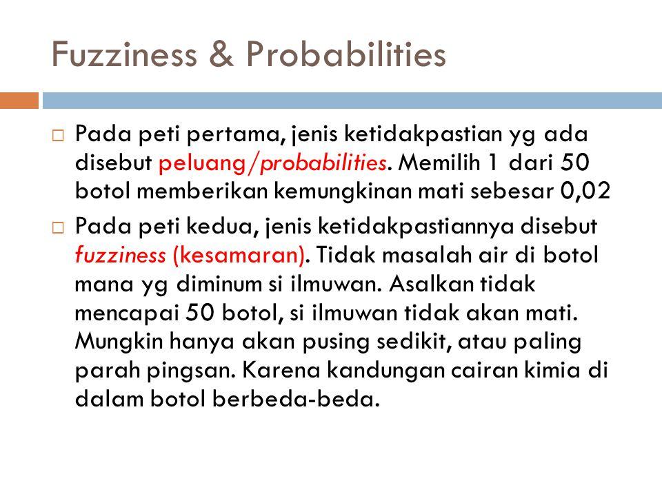 Fuzziness & Probabilities