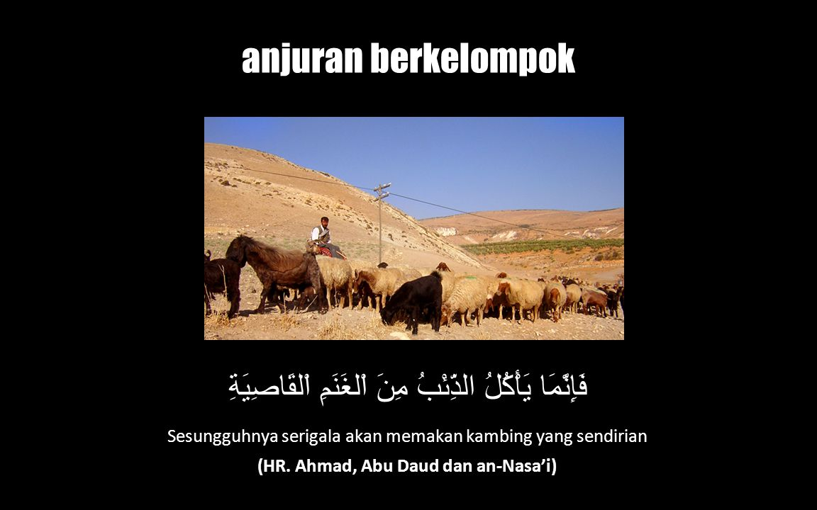 (HR. Ahmad, Abu Daud dan an-Nasa'i)