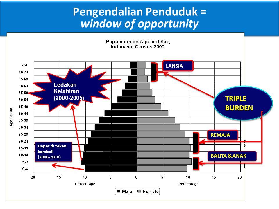TRIPLE BURDEN LANSIA. REMAJA. BALITA & ANAK. Dapat di tekan kembali. (2006-2010) Ledakan Kelahiran (2000-2005)