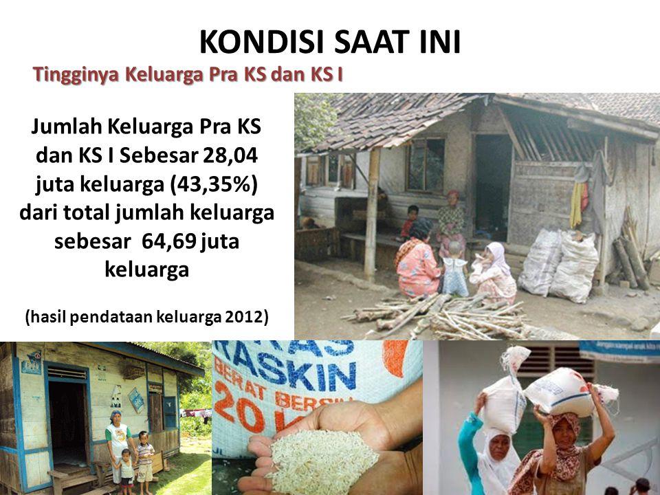 (hasil pendataan keluarga 2012)
