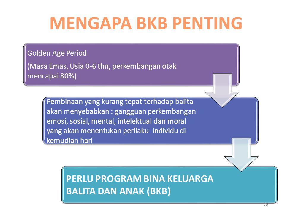 MENGAPA BKB PENTING PERLU PROGRAM BINA KELUARGA BALITA DAN ANAK (BKB)