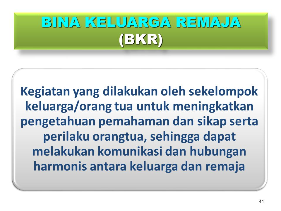 BINA KELUARGA REMAJA (BKR)