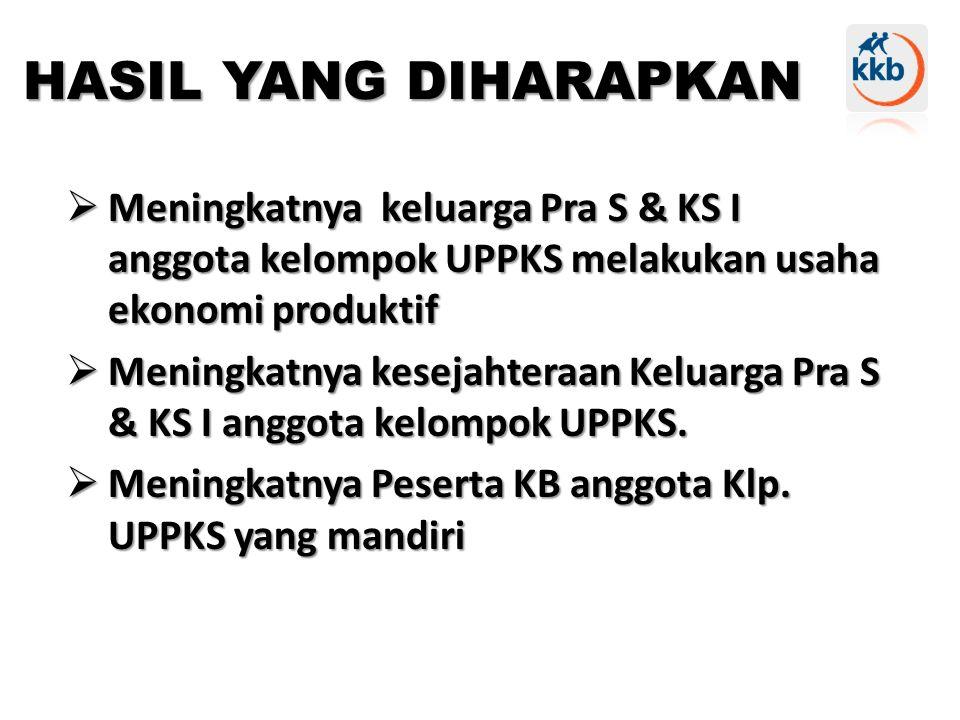 HASIL YANG DIHARAPKAN Meningkatnya keluarga Pra S & KS I anggota kelompok UPPKS melakukan usaha ekonomi produktif.