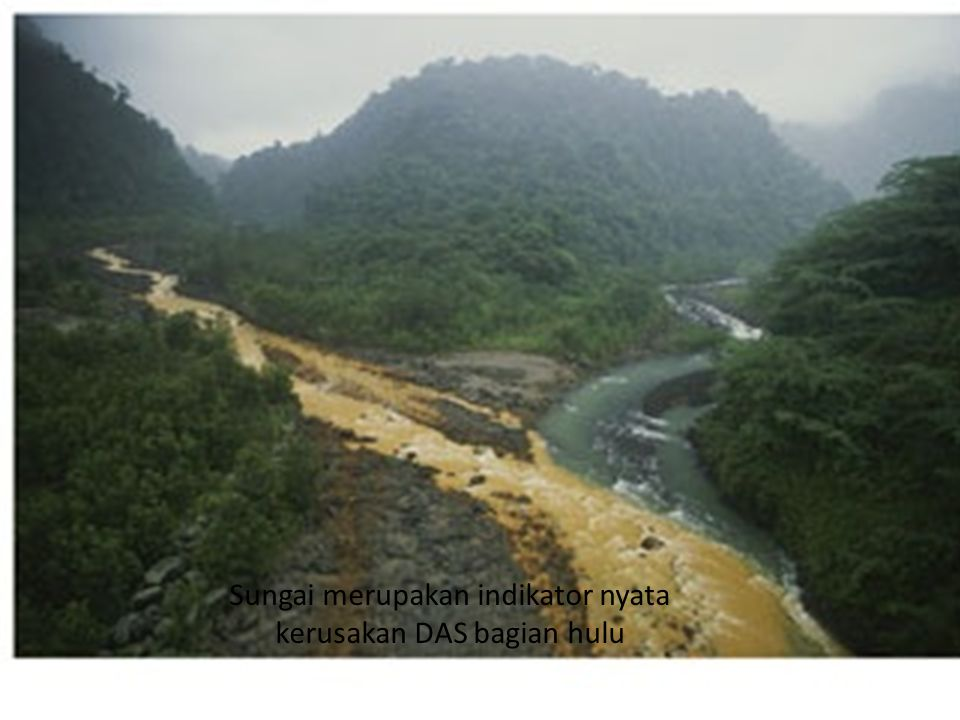 Sungai merupakan indikator nyata kerusakan DAS bagian hulu