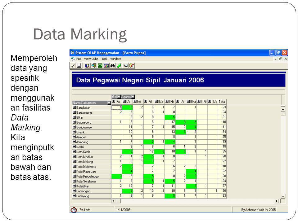 Data Marking Memperoleh data yang spesifik dengan menggunakan fasilitas Data Marking.