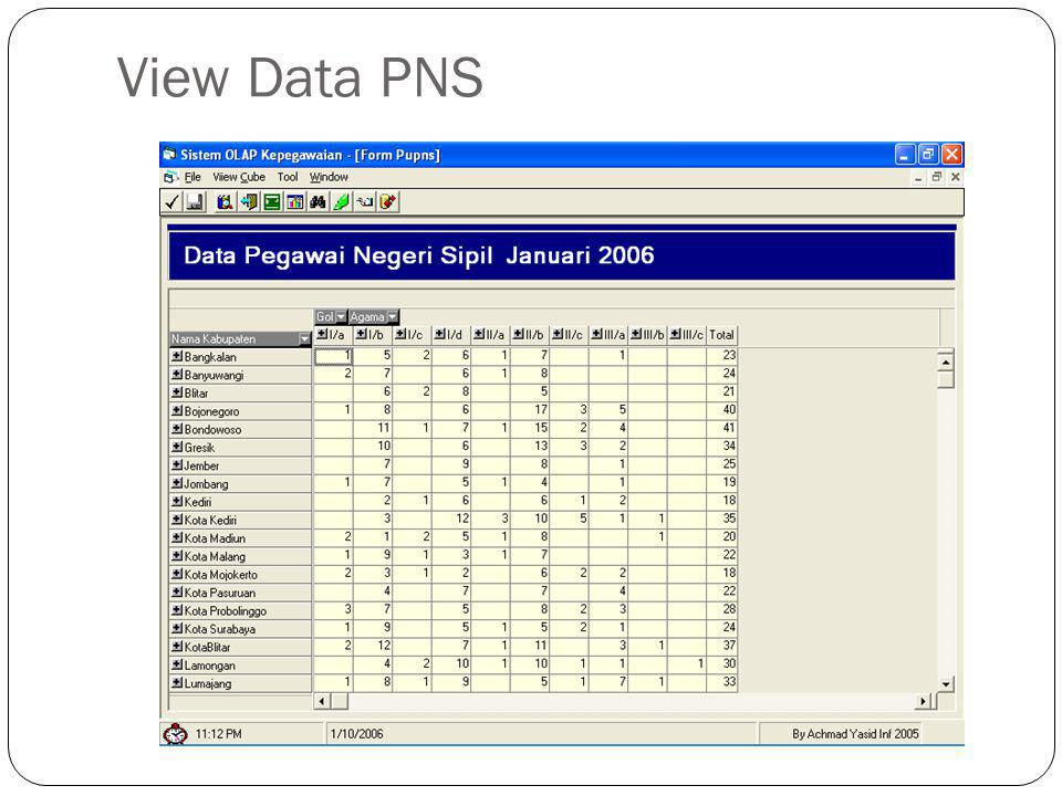 View Data PNS