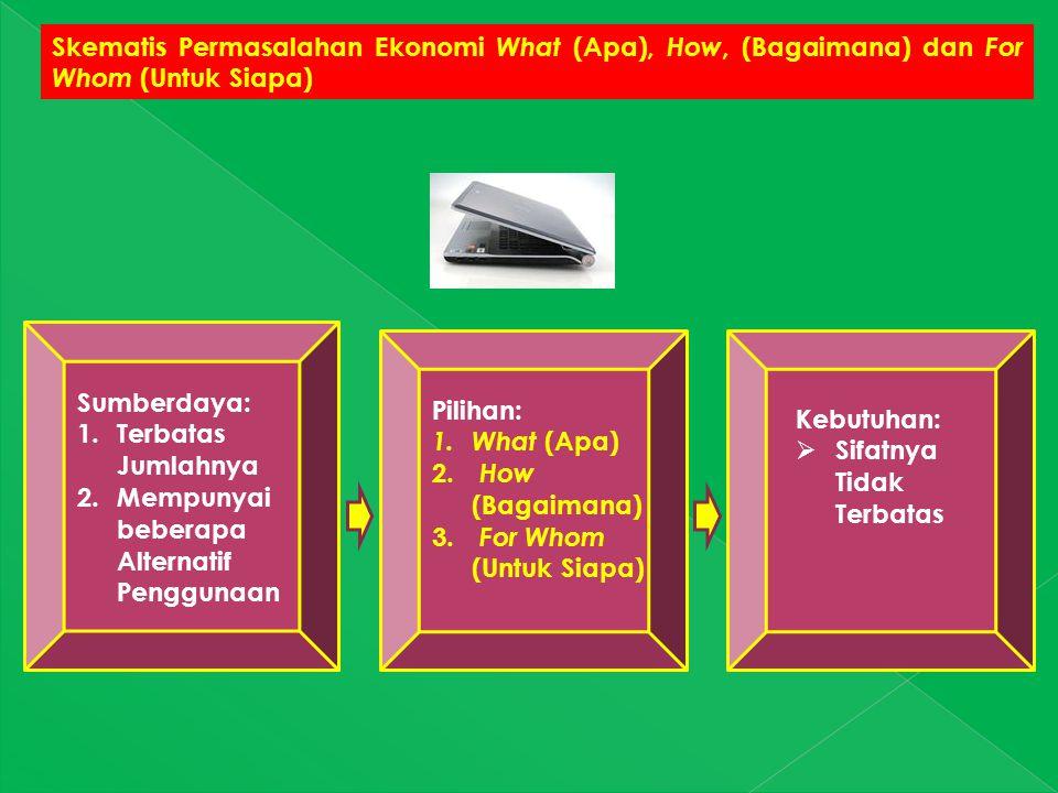 Skematis Permasalahan Ekonomi What (Apa), How, (Bagaimana) dan For Whom (Untuk Siapa)