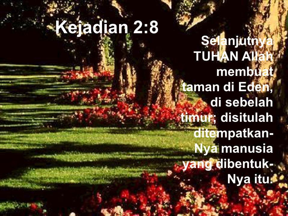 Kejadian 2:8 Selanjutnya TUHAN Allah membuat taman di Eden, di sebelah timur; disitulah ditempatkan-Nya manusia yang dibentuk-Nya itu.