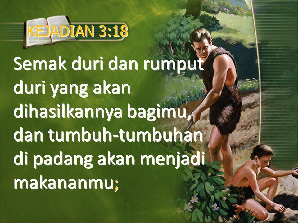 KEJADIAN 3:18 Semak duri dan rumput duri yang akan dihasilkannya bagimu, dan tumbuh-tumbuhan di padang akan menjadi makananmu;