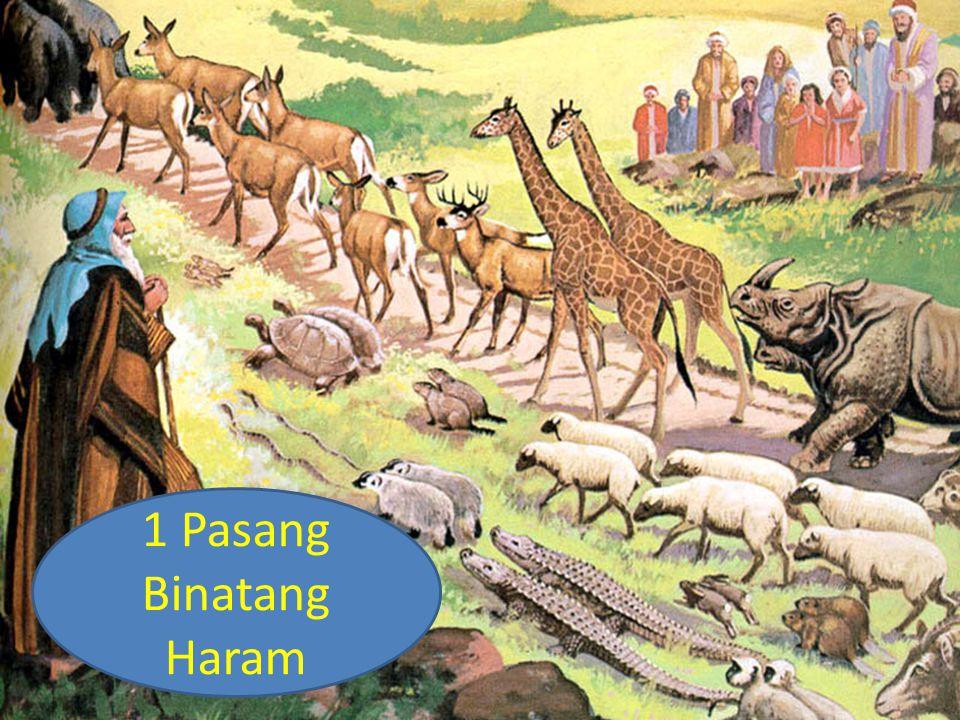 1 Pasang Binatang Haram