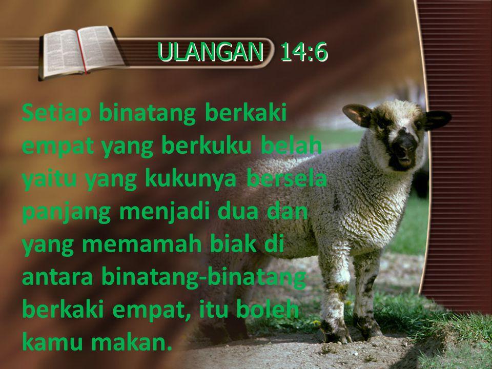 ULANGAN 14:6