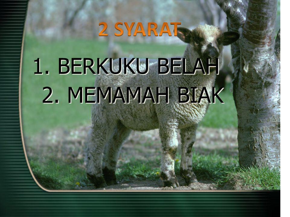 2 SYARAT 1. BERKUKU BELAH 2. MEMAMAH BIAK