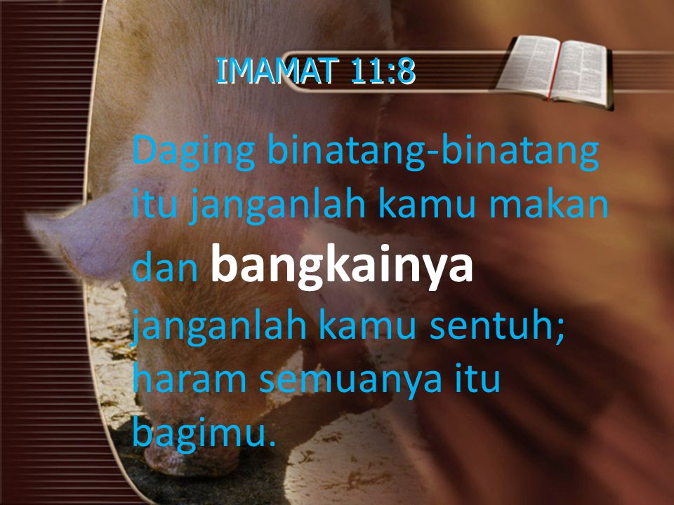 IMAMAT 11:8 Daging binatang-binatang itu janganlah kamu makan dan bangkainya janganlah kamu sentuh; haram semuanya itu bagimu.