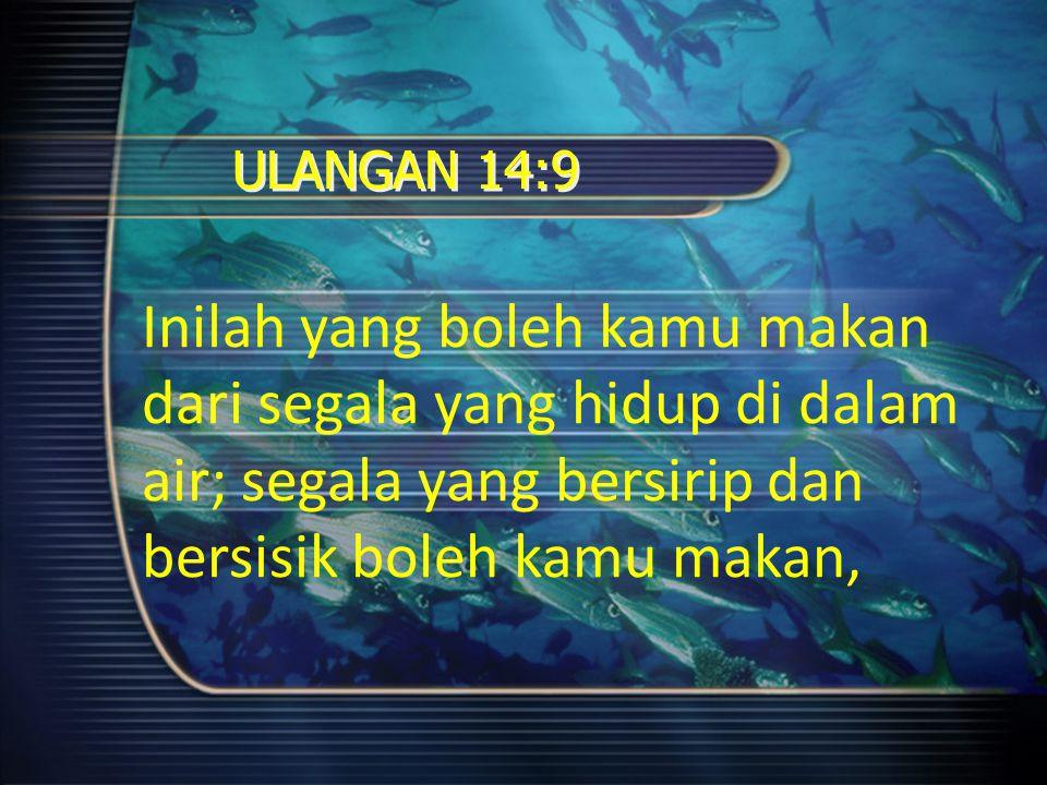 ULANGAN 14:9 Inilah yang boleh kamu makan dari segala yang hidup di dalam air; segala yang bersirip dan bersisik boleh kamu makan,