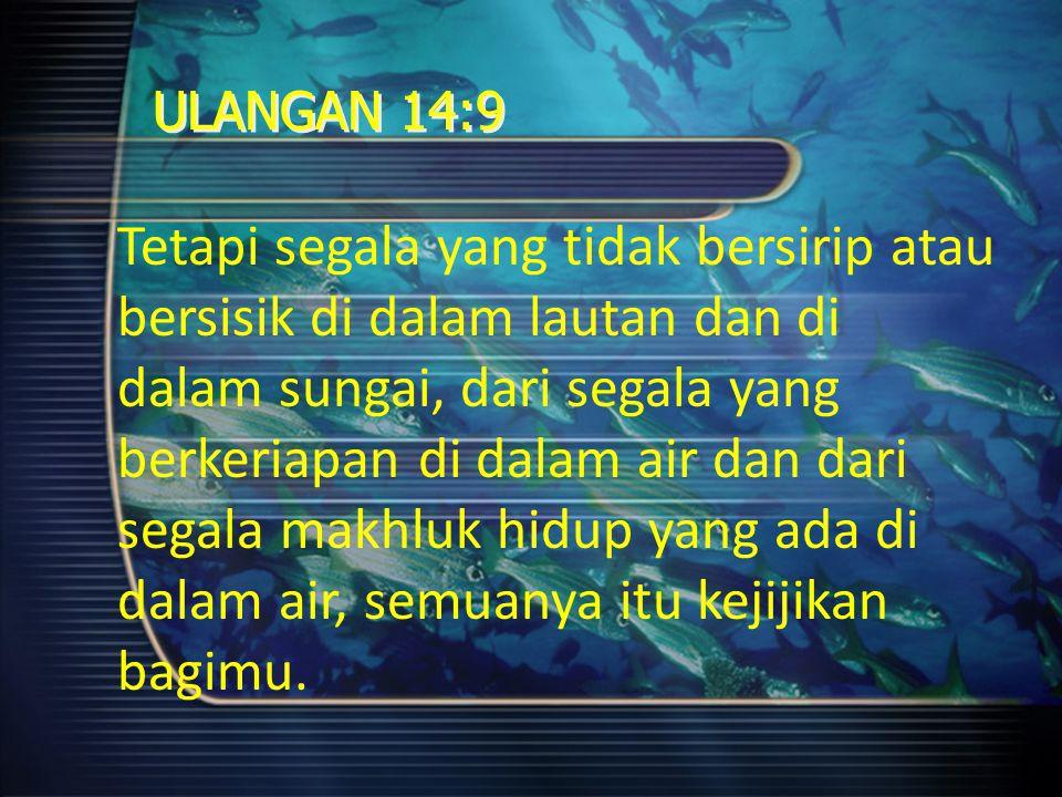 ULANGAN 14:9
