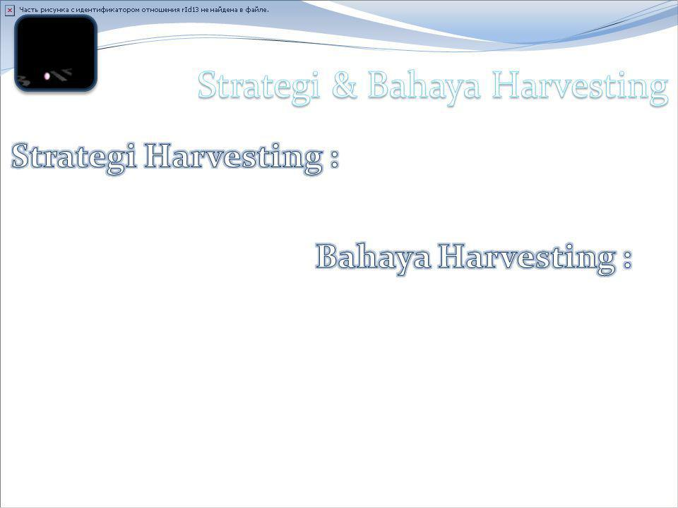 Strategi & Bahaya Harvesting