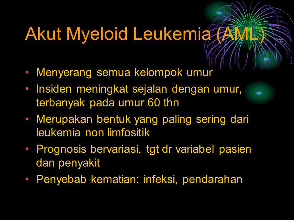 Akut Myeloid Leukemia (AML)